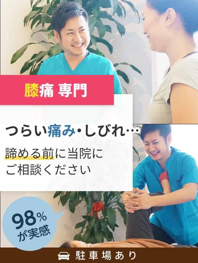 side-main-04hiza